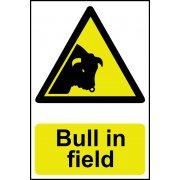 Bull in field - Corex (200 x 300mm)