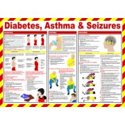 Safety Poster - Diabetes, Asthma & Seizures